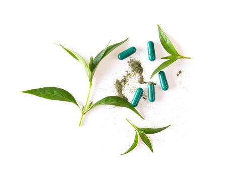fresh kariyat herb plant and capsule on white background
