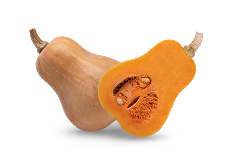 butternut isolated on a white background