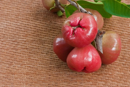 bell shaped: Rose apple