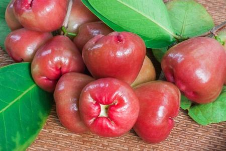 Rose apple  photo