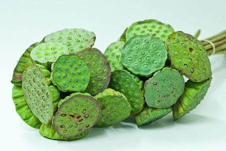 lotus seeds: Lotus seeds Stock Photo