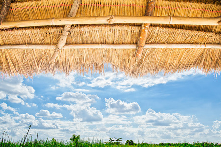 thatched: A thatched roof pattern, Backgrounds