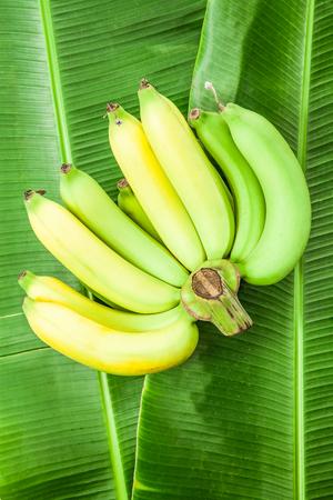 banana skin: Bunch of bananas on green banana leaves Stock Photo