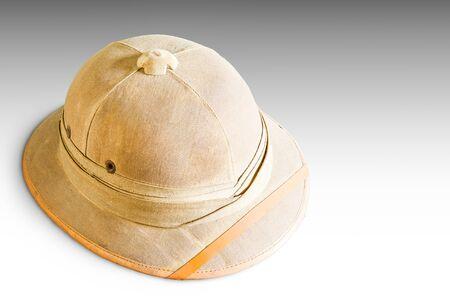 médula: Casco viejo de médula aislado en gris