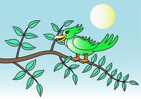 by catch: Las aves atrapan las ramas