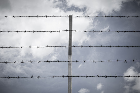 prison system: Barbed wire against the sky, Backgrounds