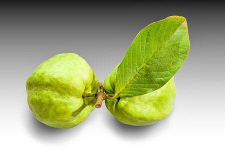 guayaba: Fresh guava fruit isolated on white