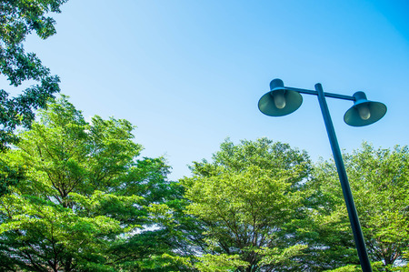 Light pole on a background of green trees Stock Photo