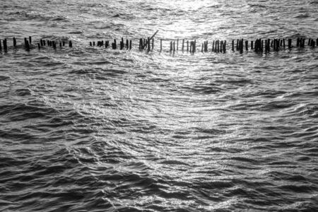 water reflection: Black and white water surface pattern, Backgrounds