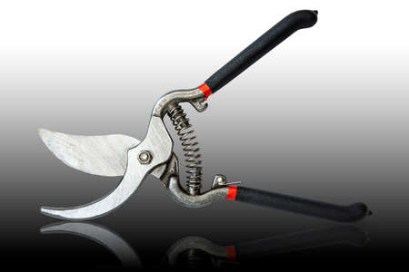 Pruning shears isolated on black background