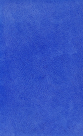 graining: Grunge blue leather background textured with deep graining patterns