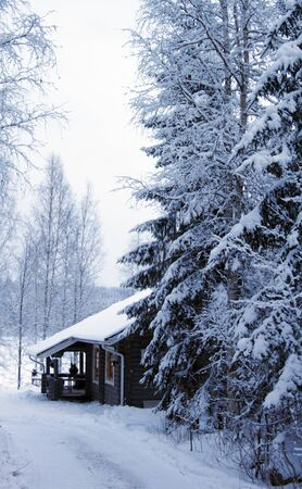 wooden cottage in winter forest covered by snow