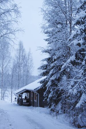 wooden cottage in winter forest covered by snow Stock Photo - 12368343