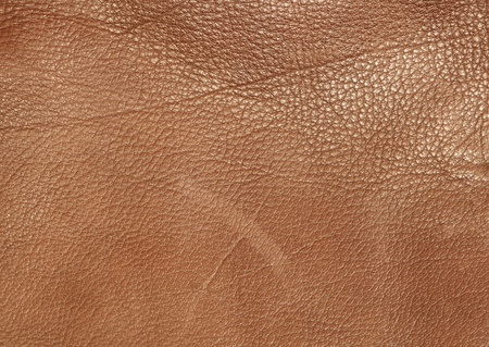 brown leather texture background Stock Photo - 12916087