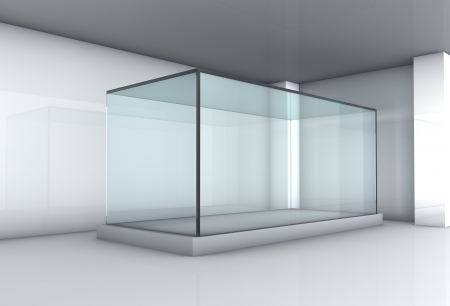 Empty glass showcase in the gallery photo