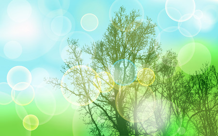 blurred lights: blurred lights on natural abstract background with trees Illustration