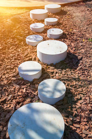 modern minimalist path of round stones in park leading on ground mulched bark of trees Stock Photo