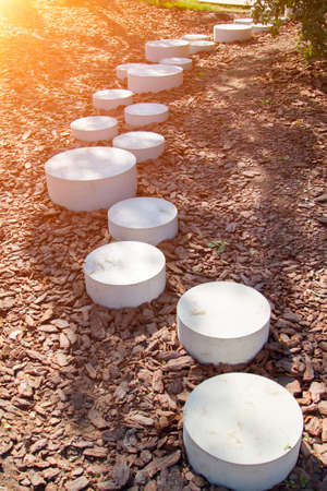 modern minimalist path of round stones in park leading on ground mulched bark of trees