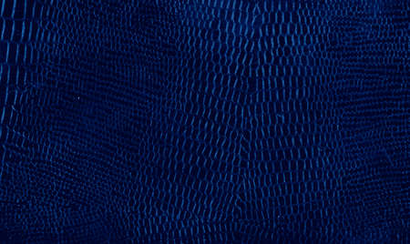 leather background textured with graining patterns toned in trendy Classic Blue color of the Year 2020 Фото со стока