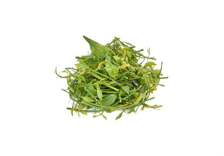 pierre: melientha suavis pierre vegetables for cooking. (Pak-wan-pa)