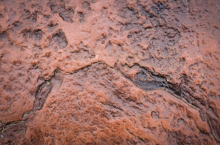 Glossy wall red stone texture background  photo