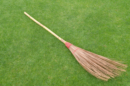 Stalk coconut broom isolated on the lawn. photo