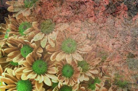 grubby: grunge pattern retro by nature background