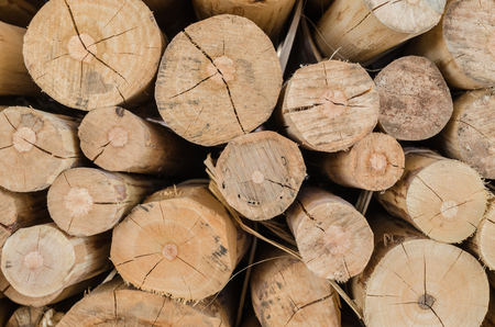 timber: Stacked wood pine timber for construction buildings Background