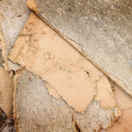 fractura: contrachapado fractura antigua textura