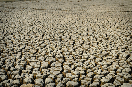 barrenness: Drought land dry and cracked soil in arid season Stock Photo