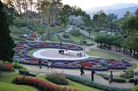 fiore giardino Archivio Fotografico