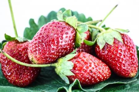 Fresh strawberry isolated on white background  Studio macro Stock Photo - 17006204