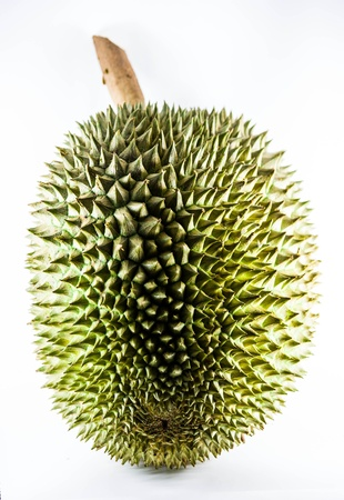 Re di frutta, durian isolato su sfondo bianco