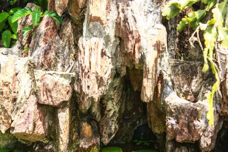 Maesa cascata nella stagione delle piogge, Thailandia
