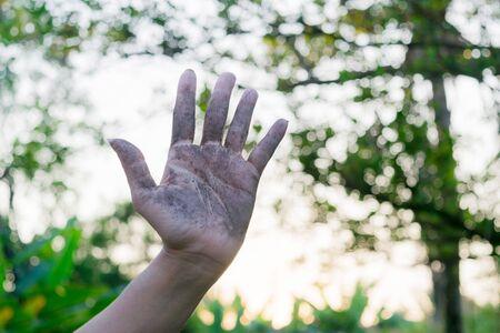 germinación: Enfoque selectivo a la mano