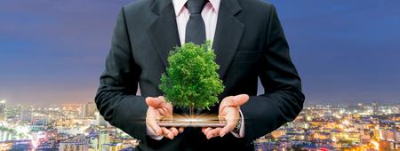 Manos humanas del concepto de la ecología que sostienen el árbol grande de la planta con el día del ambiente mundial del fondo