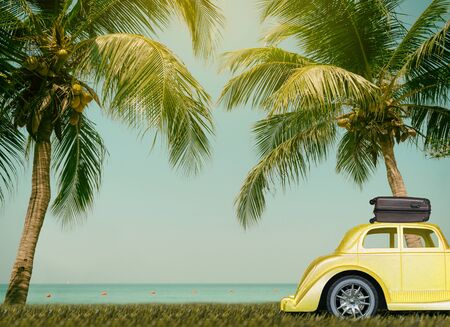Cars on the road travel go to beach sea relax palm trees coconut