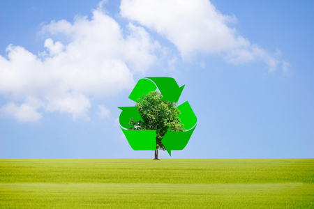 Recycle waste to protect the environment and trees. Stock Photo