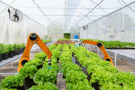 Smart robotic farmers harvest in agriculture futuristic robot automation to work technology increase efficiency 版權商用圖片 - 118125901