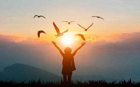 Vrouwen hand in hand op de berg avondzon tonen vrijheid en vliegende vogels silhouet