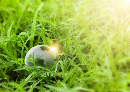 Ecology concept crystal globe resting on the grass environment Banco de Imagens - 124532472