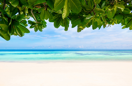 Sea and clear water leaves beach have a holiday summer relaxing and travel bright sky koh lipe thailand Banco de Imagens