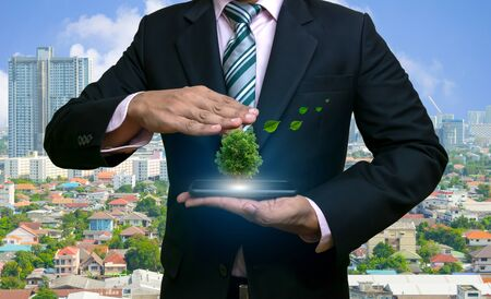 Ecology concept human hands holding big plant tree with on the smartphone in world environment day Banco de Imagens - 124532577