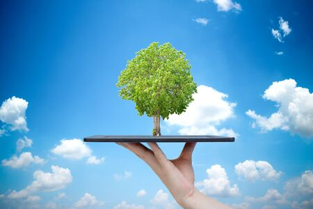 Ecological system tree and technology Planting trees and preserving the environment