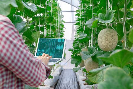 Advanced farmers quality inspection agricultural product with computer technology