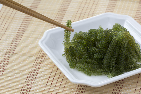 Sea grapes or green caviar and spicy sauce on a white dish the wooden dish made of Japanese style bamboo