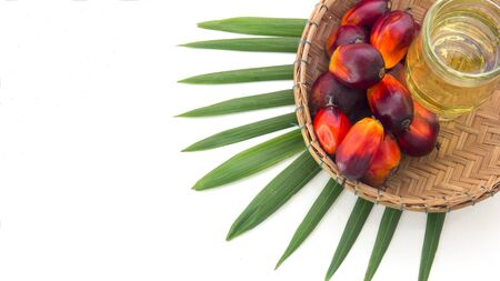 Red Oil Palm seed in a basket and leaf with cooking palm oil in glass on white background. Palm oil can be processed for food industry and produce energy important agriculture economy in tropical Asia