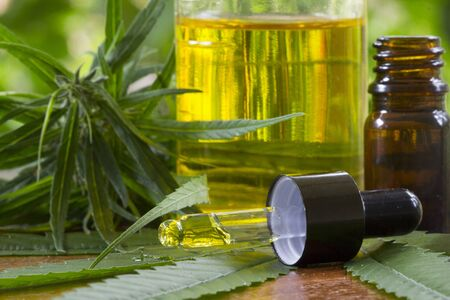 Hemp oil bottles and green cannabis leaves on a wooden table, Concept of using marijuana for medicinal purposes and herbal alternative medicine, THC or CBD hemp oil extract, pharmaceutical industry