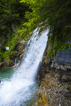 Wild waterfall in the forest 版權商用圖片
