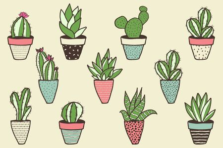 Set of different kinds of cactuses in flower pots. Sketchy vector pattern.